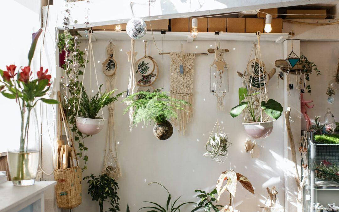 3 kamerplanten die onmisbaar zijn in jouw slaapkamer